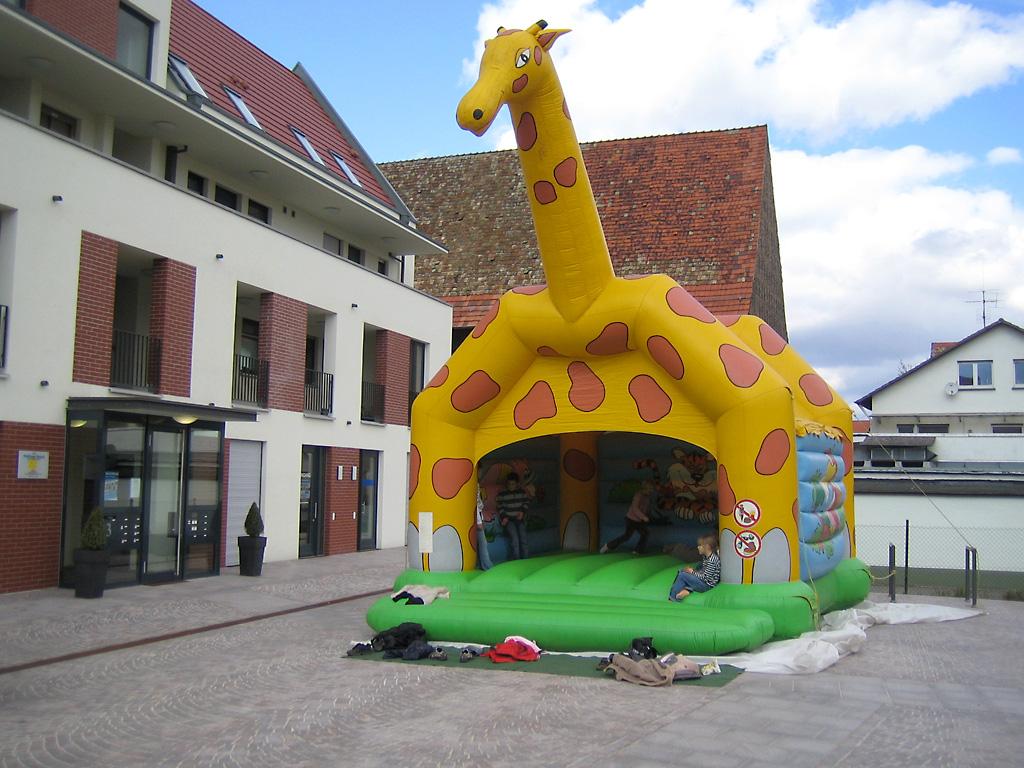 hb_giraffe.jpg